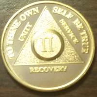 Gold AA Medallion | 24 KT Gold AA Medallion