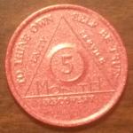5 Month Aluminum AA Chip